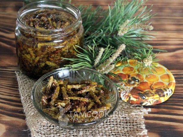 Варенье из сосновых побегов — рецепт с фото пошагово