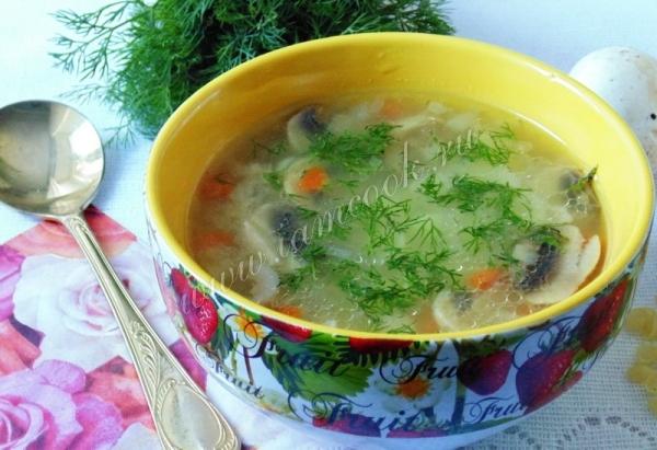 Фото супа с индейкой и грибами