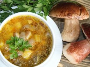 как приготовитьгрибной суп с белыми грибами